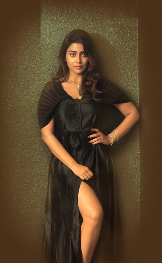 Sexy Kama maharani Actress Shriya saran hot beautiful gallery