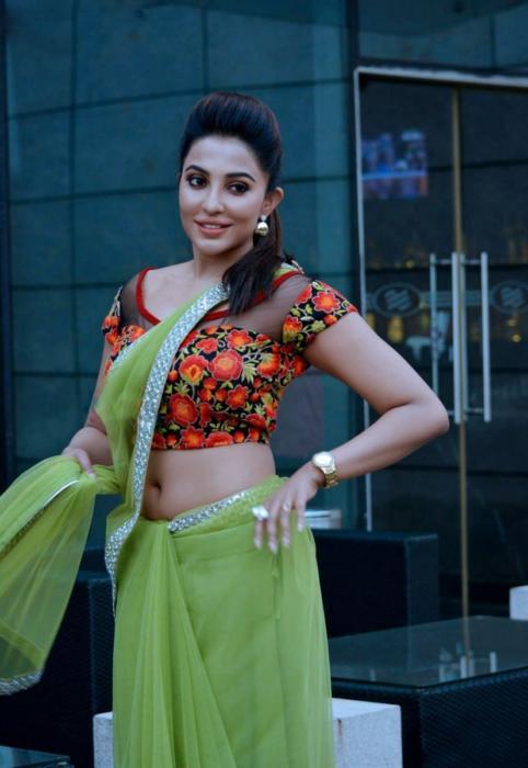 Parvatii Nair-sexy side boobs saree claveg - hot seductive mallu actress stills (2)